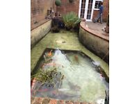 Pond Cleaning, Maintenance, Repair, Construction and More... With 'Fish Pond Perfect