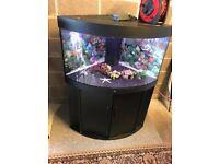 190l Juwel corner fish tank full setup with stand light heater filter pump lid gravel ornament more