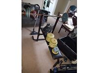 FOR SALE. Weights and weighg Bench