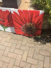 Red and white floral canvas