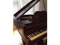 Brilliant Baby Grand Piano on sale