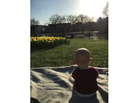 Nanny needed for 10 month old in Marylebone from July