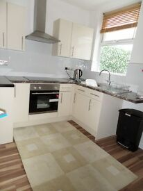 Renovated 2 bed Terrace for Rent