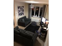 3 seater Sofa bed and two seater sofa