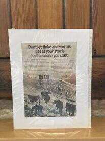 Original Vintage Nilzan In-feed granules Ad. from Power Farming magazine, March 1974