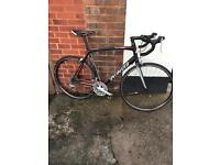 Specialized Allez Road Bike. Large Frame 55cm with carbon forks and a triple chainset