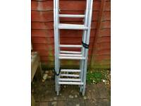 Sectional Surveyors Ladder