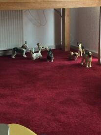 7 Coopercraft dogs