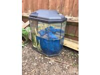 2 Aquariums , different sizes, different shapes, real Bargain