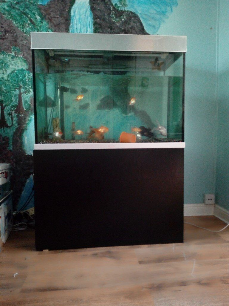 how to make a large fish tank
