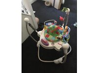 Fisher Price Jumper Used in Good Condition