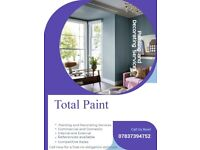 painter and decorator sprayer