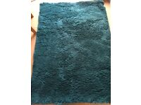 Teal coloured house rug