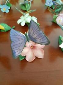 Stunning Franklin Mint Butterfly collection with certificates