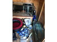 Fish tanks for sale cheapppppp