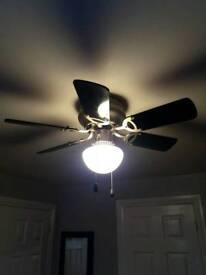 Black ceiling fan / light