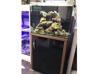 Aqua One 130 liter marine tropical cold water Fish tank Aquarium