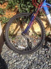 Mountain Bike Wheel & Tyre