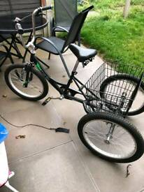 Tricycle tri mantis
