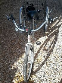 Used Adult American Tricycle