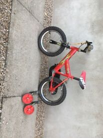 Railegh kids bike