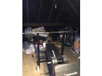 Maximuscle weight bench