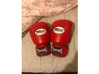 Twins Muay Thai Gloves