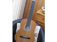Encore Acoustic Guitar full size