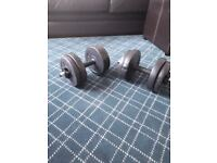 Dumbbell set £8