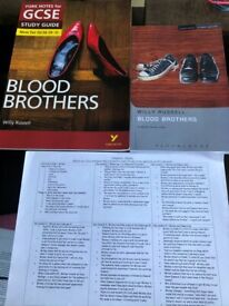GCSE Blood Brothers revision pack
