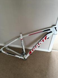 Giant roam 1 frame