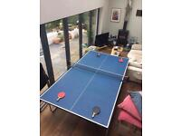 Butterfly Table Tennis - Table (With cover)