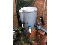 Koi Carp for sale plus Filter system, UV, Air system, pumps, piping