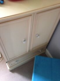 Large cupboard project perhaps