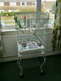 BUDGIE CAGE COMPLETE WITH BUDGIES AND EVERYTHING NEEDED