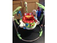 Used fisher price jumperoo
