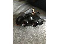 Carl Zeiss Jena field glasses binoculars