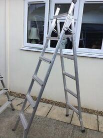Threeway ladder