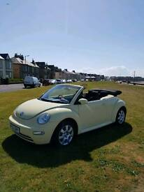 Volkswagen beetle convertible with