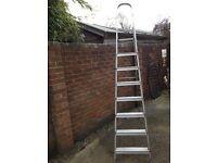 Aluminium Ladders £20