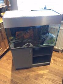 128L fish tank aquarium with lid and light wembley kot