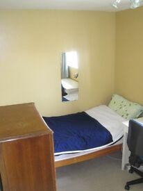 One Bedroom to Rent