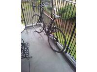 Cannondale SYNAPSE 105 Road Bike, size 58.42 cm, Mavic ksyrium equipe wheelset and DH pedals