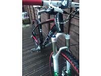 Focus raven full carbon bike