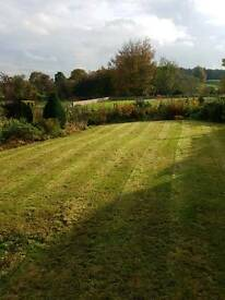 CB Garden and Forestry Services