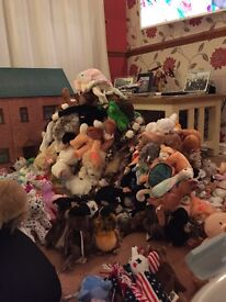 Hundreds of beanie babies