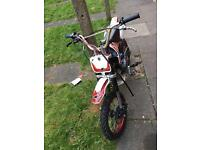 Cheap Pitbike need gone asap
