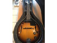 Mandolin Electric/Acoustic