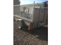 Ifor Williams p6 trailer with cage sides