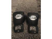 Cleto Reyes 14oz gloves
